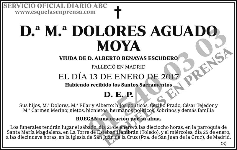 M.ª Dolores Aguado Moya